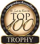 logoTOP100_trophy